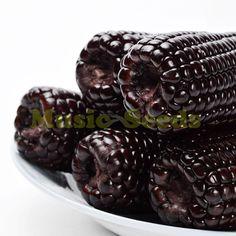 1bag=20pcs Japanese black purple corn seeds rare rainbow exotic vegetable seeds potted cherry bonsai home & garden free shipping