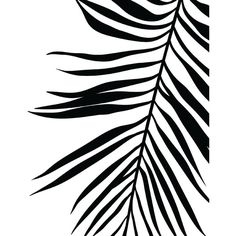 Palm Leaf Print, Tropical Leaf Print, Printable Art, Palm Art Print,... ($5.57) ❤ liked on Polyvore featuring home, home decor, wall art, backgrounds, deco, filler, phrase, quotes, saying and text