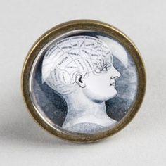Bouton de meuble crâne phrénologique - cabinet de curiosités - Boutons-Mandarine.com