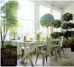 Potted trees and metal chairs bring garden style to the dining room
