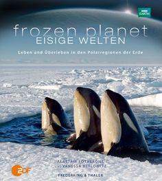 Frozen Planet - Eisige Welten: Amazon.de: Alastair Fothergill, Vanessa: Bücher