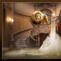 Jesus, Tribe of Judah coming to take His Bride home to heaven...Hallelujah! There is power in the blood of Jesus Christ!!!