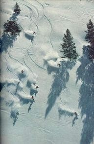 Chaleureux, groupe, ski, traces, neige, blanc, paysage, parcours, chemin, piste