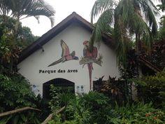 Parque das Aves - Foz do Iguaçu http://petitandy.com