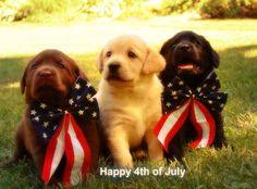 Happy 4th of July America  www.PoplarSpringsLLC.com