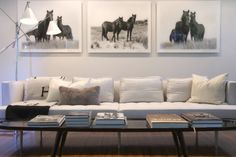 Series of black and white horse prints in modern home