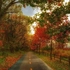 The Bicentennial trail in #Kalamazoo is gorgeous this time of year! Photo by @dmd1001. @discoverkzoo #MittenLove