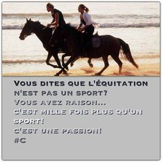 Horse quote plus Citation cheval Plus - Art Of Equitation Farm Images, Equestrian Quotes, Horse Shirt, Quote Citation, Horse Quotes, Horseback Riding, Horse Riding, Club, Animals And Pets