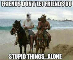 Find very good Jokes, Memes and Quotes on our site. Keep calm and have fun. Funny Pictures, Videos, Jokes & new flash games every day. Funny Horse Memes, Funny Horses, Funny Animal Memes, Funny Animals, Cute Animals, Funny Memes, Horse Humor, Horse Mask, Horse Head