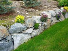 Rock wall with flowering plants