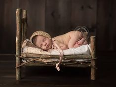 pinterest newborn bed and twig prop