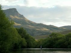 weading Malleo River, Patagonia, Argentina - GFFpix - share your best flyfishing pictures - Global FlyFisher