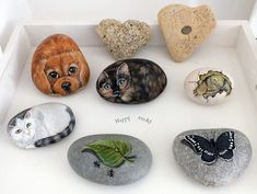 Happy rocks - galets peints
