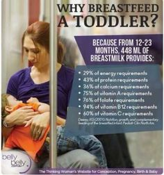 """Mothers with breastfeeding toddlers sometimes hear the comment, """"You're still breastfeeding?"""" Find out if there are any benefits to breastfeeding toddlers. Breastfeeding Toddlers, Extended Breastfeeding, Breastfeeding Benefits, Breastfeeding Support, Breastfeeding And Pumping, Attachment Parenting, Gentle Parenting, Vitamins, Vitamin B12"""
