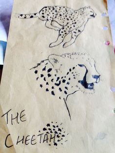 Cheetah ~ a drawing by sana ahmed