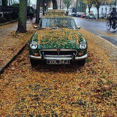Autumn at its best (: @amalieoneill) #islington #angel #london #thisislondon #ilovelondon #pictureangel #pictureislington #igersislington #igerslondon #ig_london  #highbury #northlondon by islington_london