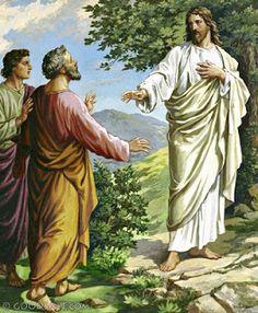 IO e un po' di briciole di Vangelo: (Mt 11,20-24) Nel giorno del giudizio, Tiro e Sidò...