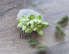 Succulent hair comb  succulent wedding  by GentleDecisions on Etsy