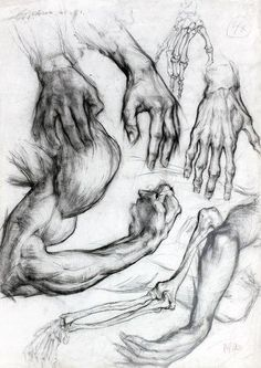 Anatomy for drawing Human Anatomy Drawing, Body Drawing, Anatomy Art, Life Drawing, Anatomy Study, Figure Drawing Reference, Anatomy Reference, Drawing Studies, Art Studies