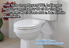 Le Truc Pour Nettoyer les WC avec un Nettoyant Fait Maison. Cleaning Recipes, Cleaning Hacks, Clean House, Helpful Hints, Toilet, Household, Sweet Home, Homemade, Make It Yourself