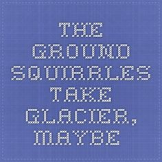 Midwest Book Review covers The Ground Squirrels Take Glacier, Maybe...