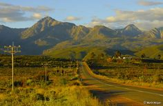 For many, the thought of travelling alone can be quite daunting, especially when going to unfamiliar places. But the reality is you shouldn't be afraid of travelling solo in South Africa. In fact, you should add it to your bucket list right now. South Africa Facts, Cape Town Tourism, Travel Alone, Solo Travel, Beautiful Places, Beautiful Roads, Scenery, Explore, Southern