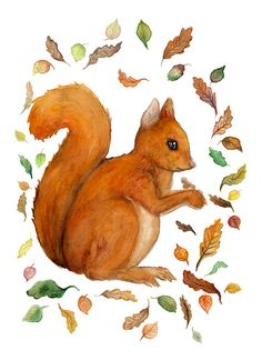 ATCTTeam Red squirrel original watercolor painting