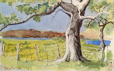 Tree in Lakes by John Harrison, artist, via Flickr