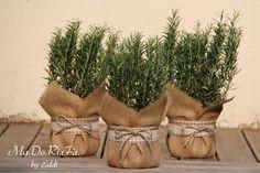 Sempre a proposito di bomboniere un'idea è quella di regalare una pianta.   Può essere una pianta grassa, facile da accudire,   o una pian...