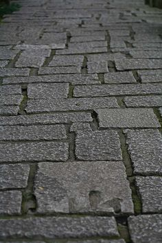 vvv Kamakura walkway