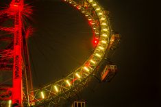 Vienna Prater Vienna Nightlife, Vienna Prater, Night Life, Fair Grounds, Stock Photos, Flowers, Pictures, Image, Photos