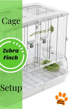 Electronic Toys Toy Phones Singing Cute Singer Bird Gifts Electric Plastic Voice Control Decor Birdcage Aesthetic Appearance