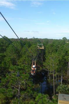"""See the wilds of Forever Florida like never before – from high up in the treetops! The Zipline Adventure will take you on a two and a half hour adventure like none other, reaching heights of 68 feet! Led by an expert guide, you'll suit up and """"zip"""" among the trees from platform to platform along a system of seven high-tension cables and two sky-bridges.  Launching from a 65-foot-high platform, riders will swing, swoop, jump, zip and dip through the treetops at speeds up to 20 mph along a…"""