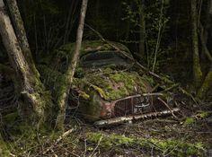 """Peter Lippmann   Série de photos """"Paradise Parking"""", voitures anciennes garées pour l'éternité dans la végétation."""