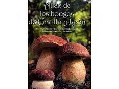 Atlas de los hongos de Castilla y León, de Juan Antonio Sánchez Rodríguez, Aurelio García Blanco.  L/Bc 635.8 SAN atl   http://almena.uva.es/search~S1*spi?/cL%2FBc+635.8+SA%C3%91+con/cl+bc+635+8+san~a+con/-3%2C-1%2C0%2CE/frameset&FF=cl+bc+635+8+san+atl&1%2C1%2C
