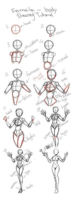 Drawing tutorial for female body - drawing the female human . - Tutorial for drawing female body – drawing the female human body Tutorial for drawing female body - Art Drawings Sketches Simple, Pencil Art Drawings, Drawing Tips, Easy Drawings, Drawing Drawing, Manga Drawing Tutorials, Drawing Techniques, Drawing Hair, Contour Drawings