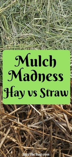 Differences between hay and straw  as mulch for the garden.