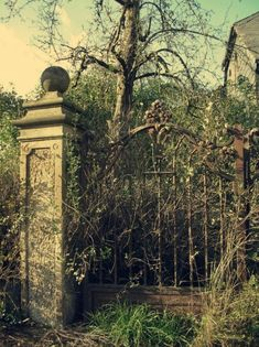 Oh wow. This has the whole Haunted House/Secret Garden look. So so beautiful!