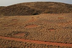 NAMIBIAN FAIRY CIRCLE MYSTERYSOLVED Fairy circles are typically circular barren patches of land that are usually found in the grasslands of western Southern Africa. | www.frontiergap.com | #science #nature #Namibia