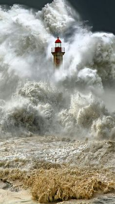 I love lighthouses in general, but this picture is amazing.