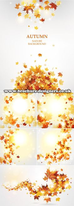 1000 Images About Autumn Leaves Background Flyer Template