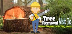 We a company located in Nassau county New York we provides best tree removal, Tree trimming, Stump removal around Nassau county Long Island. Go to official site: http://www.treeremovalny.com/