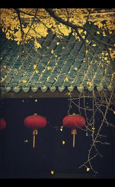 garden of the far east Art Chinois, Chinese Element, Art Asiatique, Beyond The Sea, China Art, Chinese Architecture, Ancient China, Japanese Prints, Chinese Culture