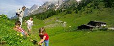 Enjoy the alpine summer in the province of Salzburg  http://www.bergheimat.com/salzburg_vacation.en.htm