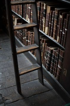 I want a library with a ladder in my home.