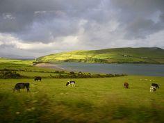 TOP WORLD TRAVEL DESTINATIONS: Dingle ireland