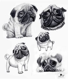 Funny pictures about A pug's caricature looks just like the real dog. Oh, and cool pics about A pug's caricature looks just like the real dog. Also, A pug's caricature looks just like the real dog. Amor Pug, Pug Tattoo, Photo Animaliere, Pugs And Kisses, Pug Art, Real Dog, Black Pug, Cute Pugs, Funny Pugs