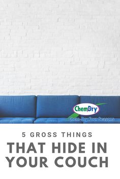 Your dirty couch could be hiding more than meets the eye. That's why you need upholstery cleaning from Chem-Dry Four Seasons in Edmonds, WA. Upholstery Cleaning, Furniture Cleaning, How To Clean Furniture, Furniture Upholstery, Cleaning Chemicals, Dry Cleaning, Cleaning Hacks, Dust Mites, Cleaning Service