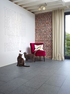 Huge range of floor coverings from luxury vinyl tiles to laminate and shaggy rugs to carpet tile squares. Vinyl Flooring Rolls, Luxury Vinyl Tile, Carpet Tiles, Plank, Shag Rug, Tile Floor, Accent Chairs, Stone, Furniture