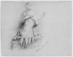 Forearm And Hand Holding A Book - Andrea Del Sarto